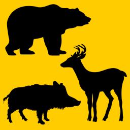 Pachete complete pentru animale sălbatice